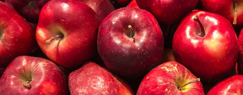 cueillette de pommes #pus capable#